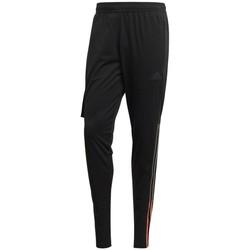 Textil Homem Calças de treino adidas Originals  Preto