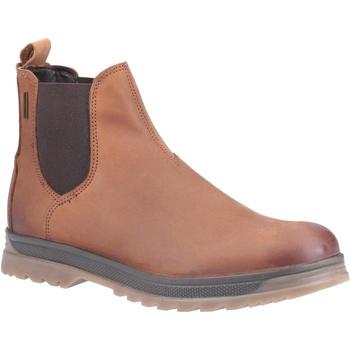 Sapatos Homem Botas baixas Cotswold  Castanha