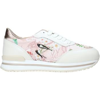 Sapatos Mulher Sapatilhas Alviero Martini 9851 622A Branco