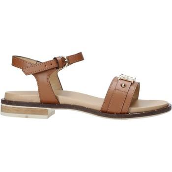 Sapatos Mulher Sandálias Alviero Martini E084 8578 Castanho