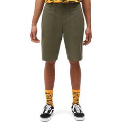 Textil Homem Shorts / Bermudas Dickies DK0A4XB4MGR1 Verde