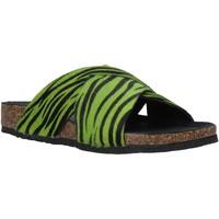 Sapatos Mulher Chinelos Bionatura 10A2118-I-CAVERN Verde