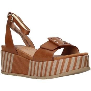 Sapatos Mulher Sandálias Marco Tozzi 2-2-28513-26 Castanho