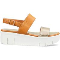 Sapatos Mulher Sandálias Docksteps DSW953101 Castanho