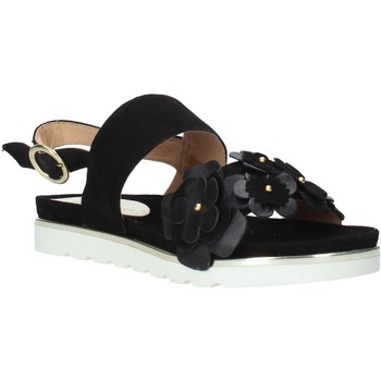 Sapatos Mulher Sandálias Docksteps DSE104965 Preto