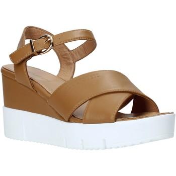 Sapatos Mulher Sandálias Docksteps DSW952001 Castanho
