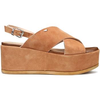 Sapatos Mulher Sandálias Alberto Guardiani AGW003001 Castanho