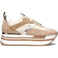 Sapatos Mulher Sapatilhas Alberto Guardiani AGW004304 Bege