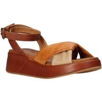 Sapatos Mulher Sandálias Sshady L2401 Castanho