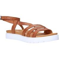 Sapatos Mulher Sandálias Sshady MRT339 Castanho