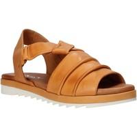 Sapatos Mulher Sandálias Sshady L1401 Castanho