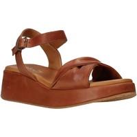 Sapatos Mulher Sandálias Sshady L2402 Castanho