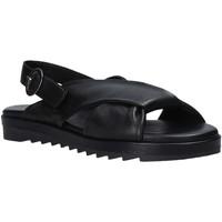 Sapatos Mulher Sandálias Sshady L1403 Preto