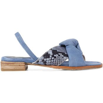 Sapatos Mulher Sandálias Paco Gil JULIA Azul