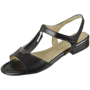 Sapatos Mulher Sandálias Ara Ega S Highoft Preto