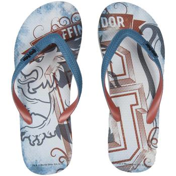 Sapatos Homem Chinelos Harry Potter 2300003802 Gris