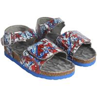 Sapatos Rapaz Sandálias Spiderman 2300003857 Gris