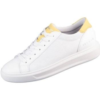 Sapatos Homem Sapatilhas IgI&CO Sem Branco