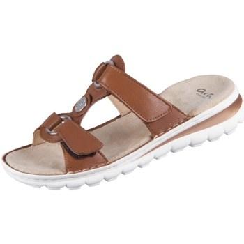 Sapatos Mulher Chinelos Ara Tampa Castanho
