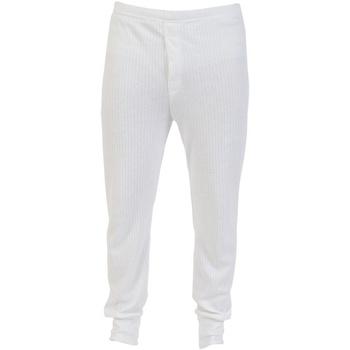 Roupa de interior Rapariga Meia calça / Meias de liga Absolute Apparel  Branco