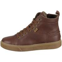 Sapatos Criança Sapatilhas de cano-alto Bisgaard 61806219306 Castanho