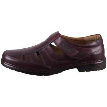 Sapatos Homem Sapatos Josef Seibel Alastair 08 Castanho