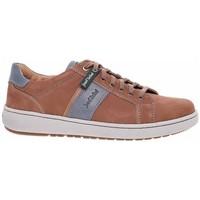 Sapatos Homem Sapatos Josef Seibel 2640121301 Cinzento, Castanho
