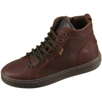 Sapatos Criança Sapatilhas de cano-alto Bisgaard 618062201322 Castanho