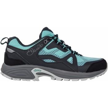 Sapatos Mulher Sapatos de caminhada Dare 2b  Ebony/Aruba Blue