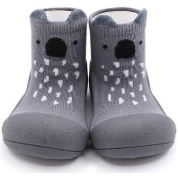Sapatos Criança Pantufas bebé Attipas Endangered Animal Koala Cinza