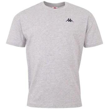 Textil Homem T-Shirt mangas curtas Kappa Veer Tshirt Cinzento