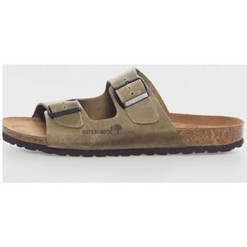 Sapatos Homem Chinelos Interbios 9560 Verde
