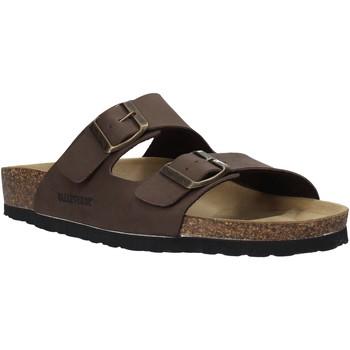 Sapatos Homem Chinelos Valleverde G59900 Castanho