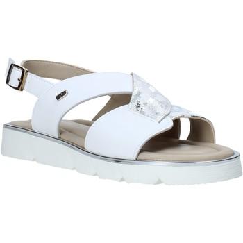 Sapatos Mulher Sandálias Valleverde 32120 Branco