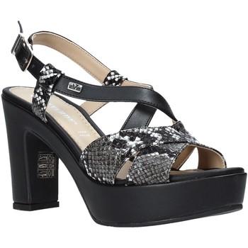 Sapatos Mulher Sandálias Valleverde 32520 Preto