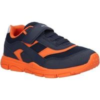 Sapatos Rapaz Multi-desportos Geox J847NA 0CE14 J NEW TORQUE Azul