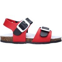 Sapatos Criança Sandálias Bionatura LUCA Vermelho