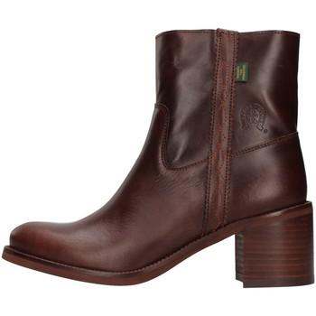 Sapatos Mulher Botins Dakota Boots C12 Castanho