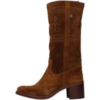 Sapatos Mulher Botas Dakota Boots C5 Castanho
