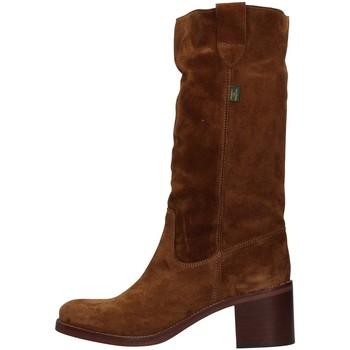 Sapatos Mulher Botas Dakota Boots C1 Castanho