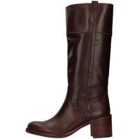Sapatos Mulher Botas Dakota Boots C11 Castanho