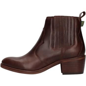 Sapatos Mulher Botins Dakota Boots DKT73 Castanho
