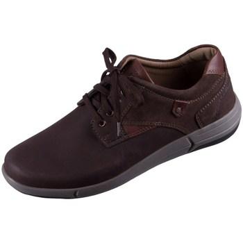 Sapatos Homem Sapatilhas Josef Seibel Enrico 11 Castanho