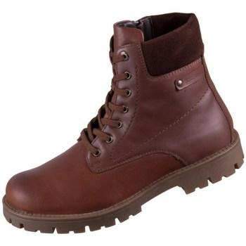Sapatos Homem Botas baixas Josef Seibel Cheston 01 Castanho