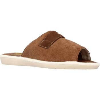 Sapatos Homem Chinelos Nordikas 7336B Marron