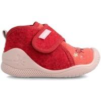 Sapatos Rapariga Pantufas bebé Biomecanics