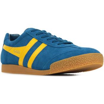 Sapatos Homem Sapatilhas Gola Harrier Suede Azul