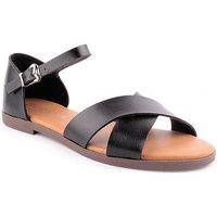 Sapatos Mulher Sandálias Lapierce L Sandals CASUAL Preto