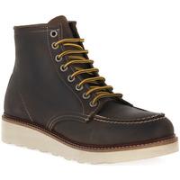Sapatos Homem Botas baixas Docksteps MUD OAKLAND 1726 Marrone