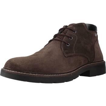 Sapatos Mulher Botas baixas Imac 801219I Marron